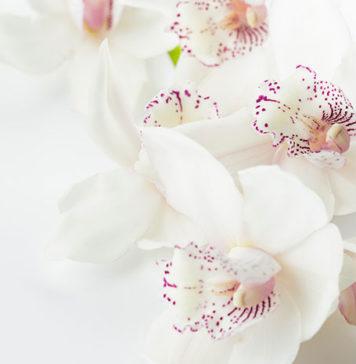 Kosmetyki do pielęgnacji intymnej